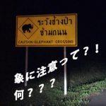 タイで車を運転する人必読!注意すべき5つのこと。(観光編)