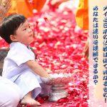 タイと日本の仏教は似て非なるもの!あなたは違いを理解できるか?