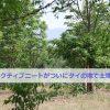 五十代アクティブニート(日本人)がタイの田舎で土地購入?!